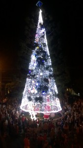 Turning on Christmas in Cooroy Tree
